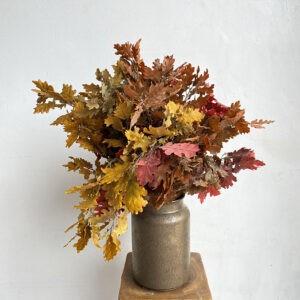 Beech & Oak Leaves